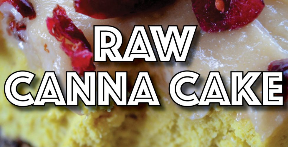 Vegan Edibles: Raw Citrus Canna Cake (Paleo Friendly)