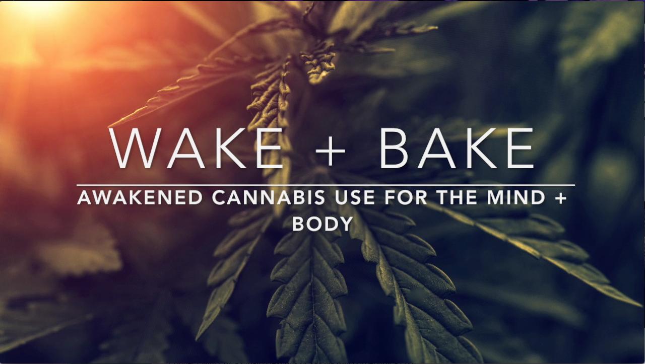 cannabis coach interview